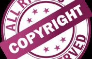 Trademark Infringement Legal professional